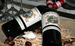 Ristorante Pizzeria Taormina - Deinze - Fotogalerij